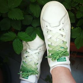 lacets vert stan smith france